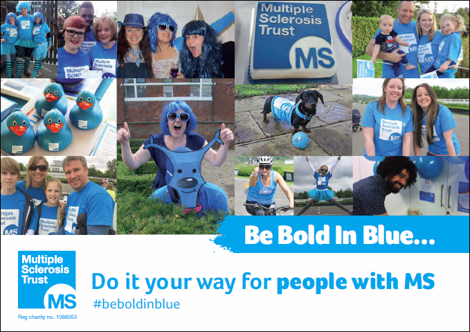 Be Bold in Blue guide
