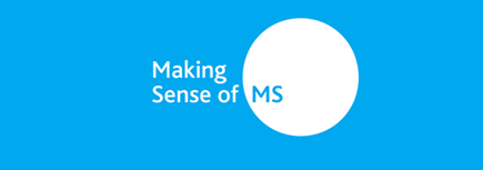 Making sense of MS logo