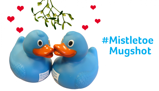 MS Trust ducks kissing under the mistletoe