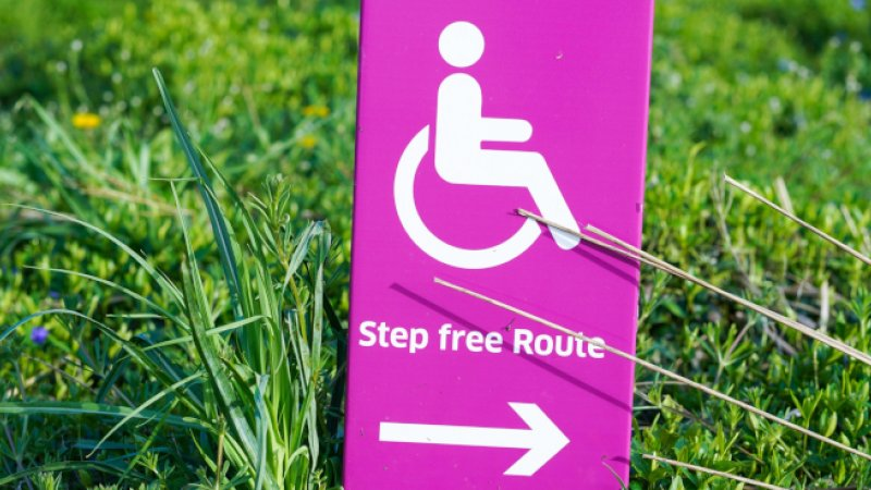 Pink step free route sign in grass