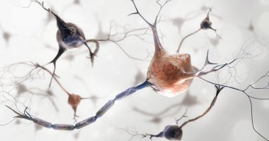 Temelimab: early clinical trial suggests potential for remyelination