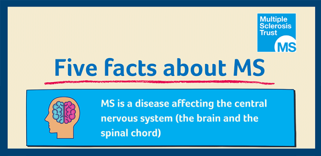 Five facts about MS
