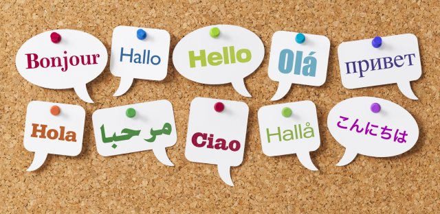 Learning a second language improves brain structures in MS